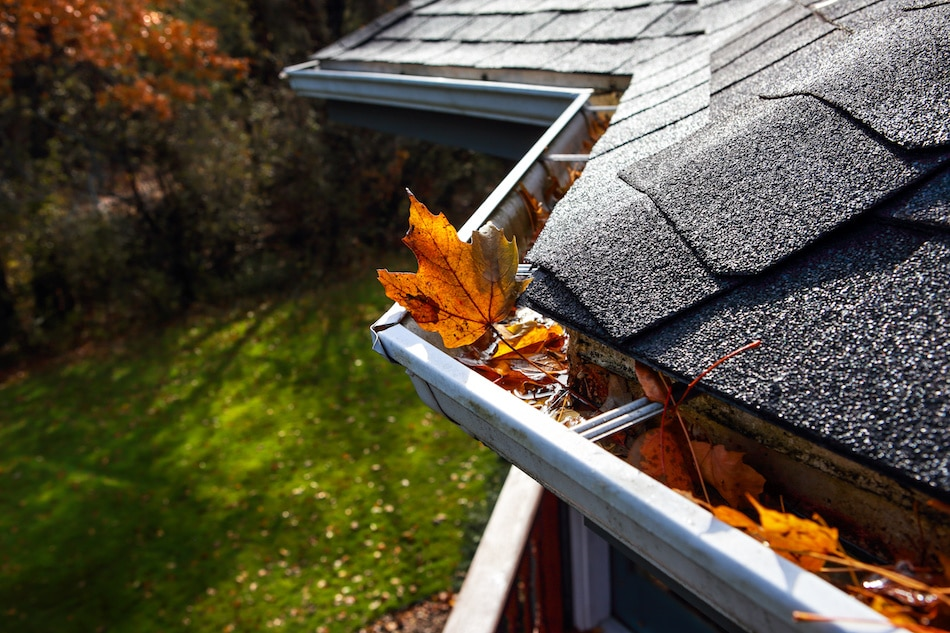 Learn How to Maintain Your Gutters